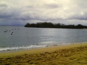 ザ ラグーナ リゾート & スパ ヌサドゥアのビーチ2