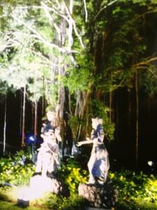 ザ ラグーナ リゾート & スパ ヌサドゥアの夜のガーデン