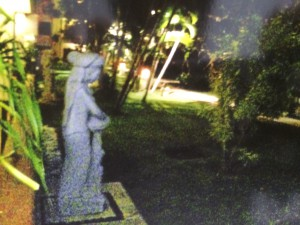 ザ ラグーナ リゾート & スパ ヌサドゥアの夜のガーデン2