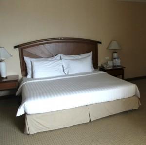 バイヨーク-スカイ-ホテルの部屋2