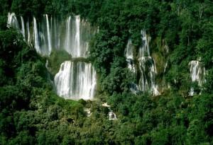 世界遺産・トゥンヤイ-フワイ・カーケン野生生物保護区3