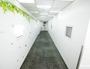 hallways--v2420691