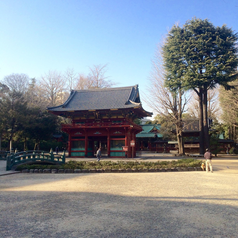 東京の観光スポット-根津神社-12