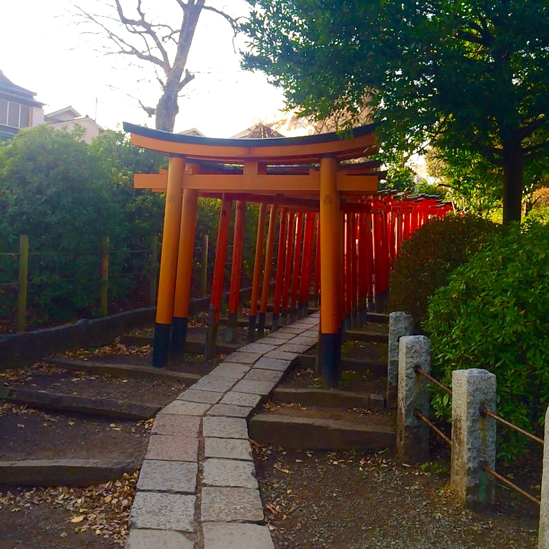 東京の観光スポット-根津神社-10