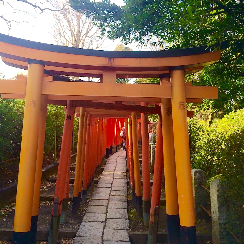 東京の観光スポット-根津神社-2