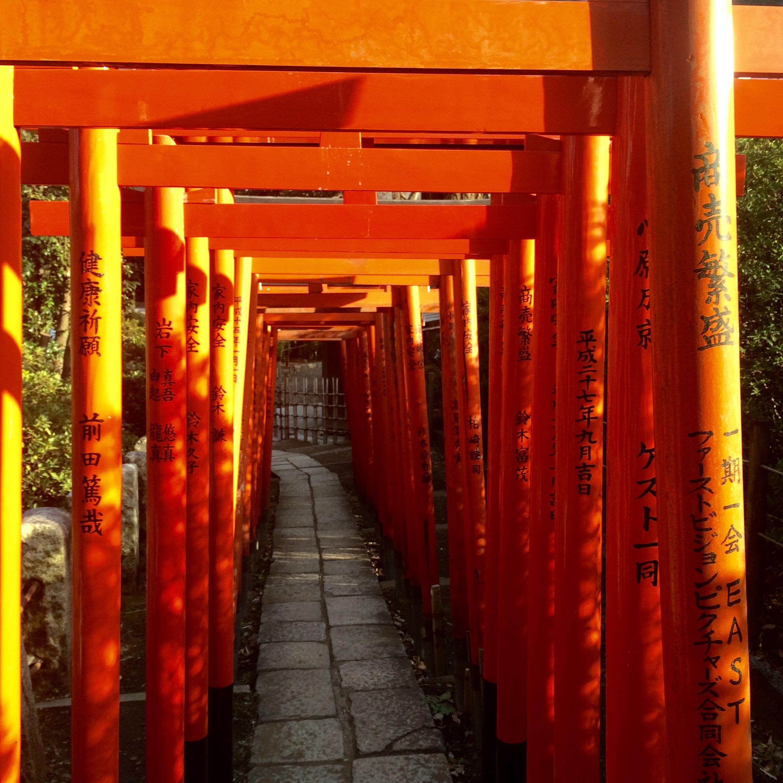 東京の観光スポット-根津神社-3