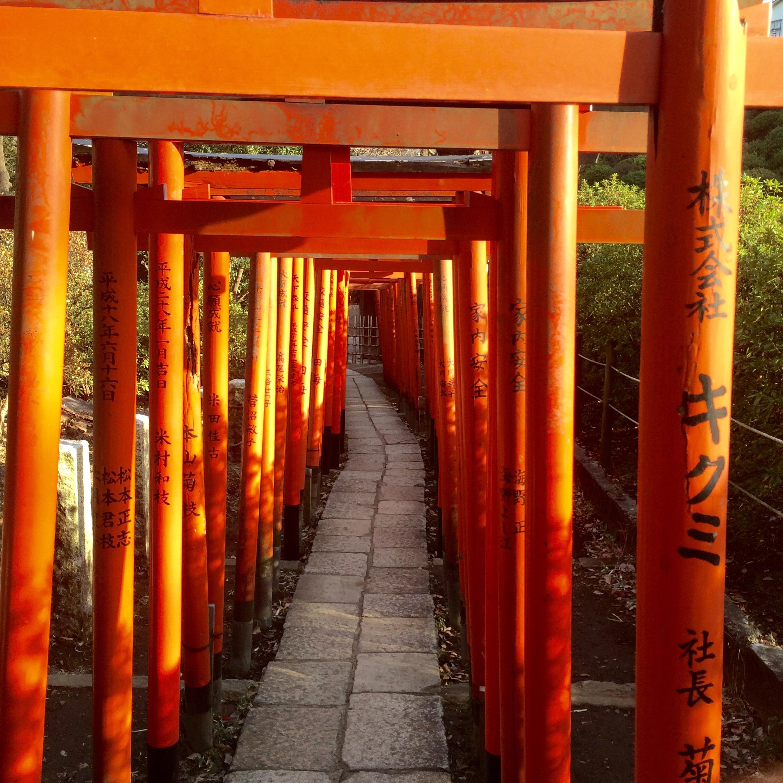 東京の観光スポット-根津神社-4