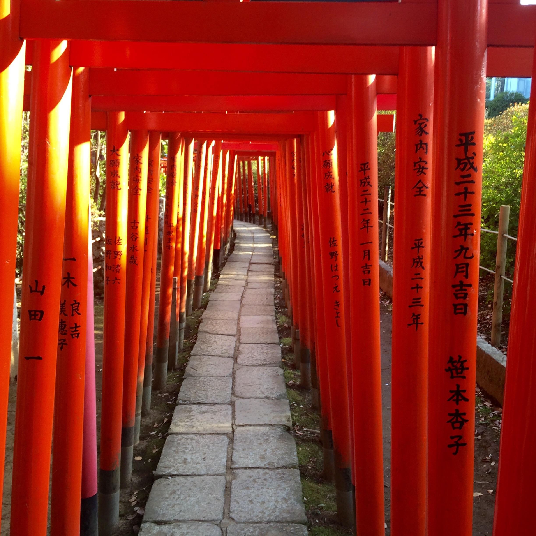 東京の観光スポット-根津神社-5