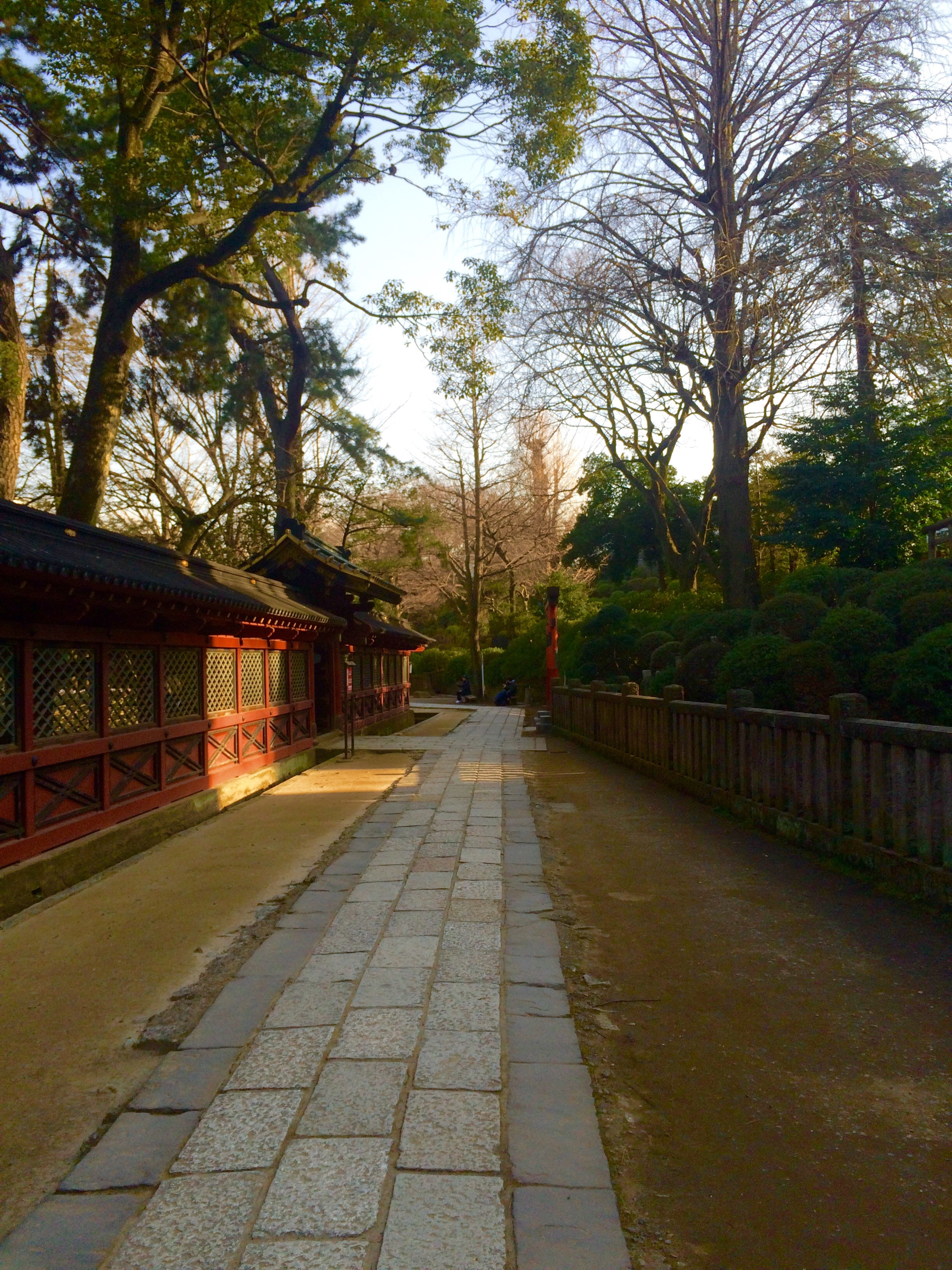 東京の観光地-根津神社-8
