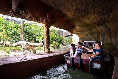 シンガポールのリバーサファリ-RiverSafari-3