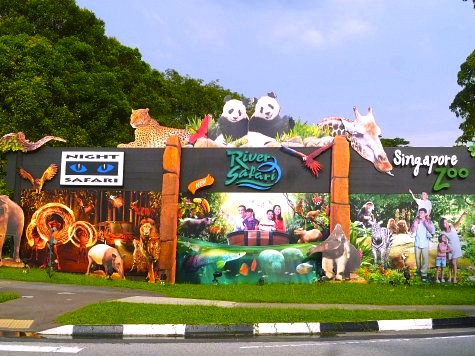 シンガポールのリバーサファリ-RiverSafari-4