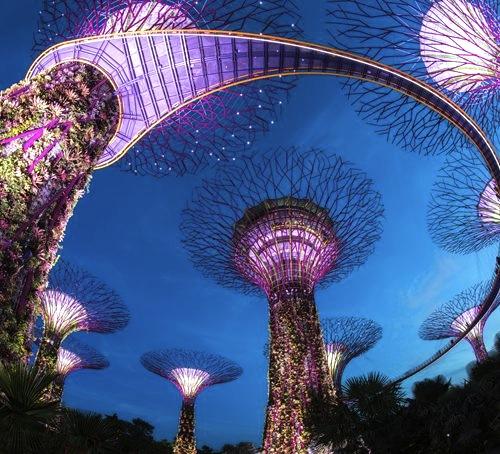 シンガポールの植物園-ガーデンズ・バイ・ザ・ベイ-5