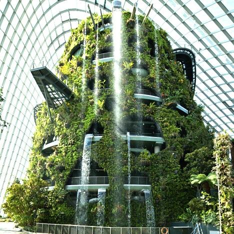 シンガポールの植物園-ガーデンズ・バイ・ザ・ベイ-7