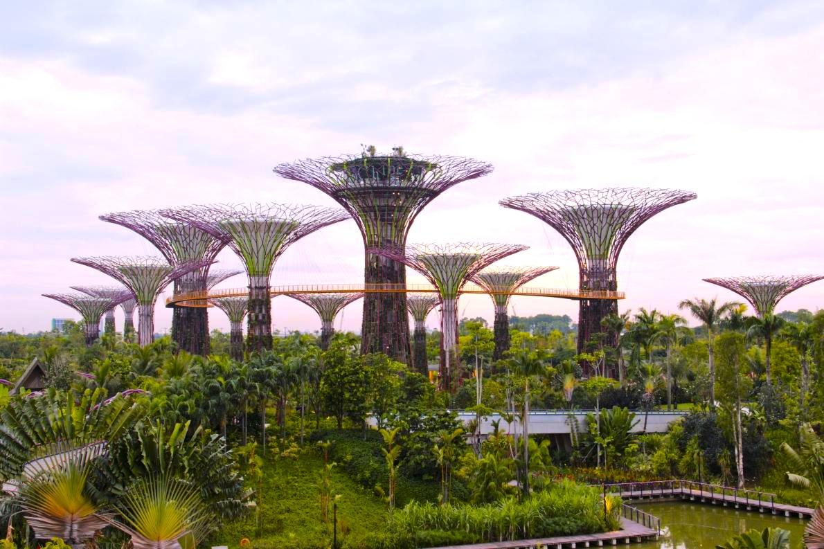 シンガポールの植物園-ガーデンズ・バイ・ザ・ベイ-11