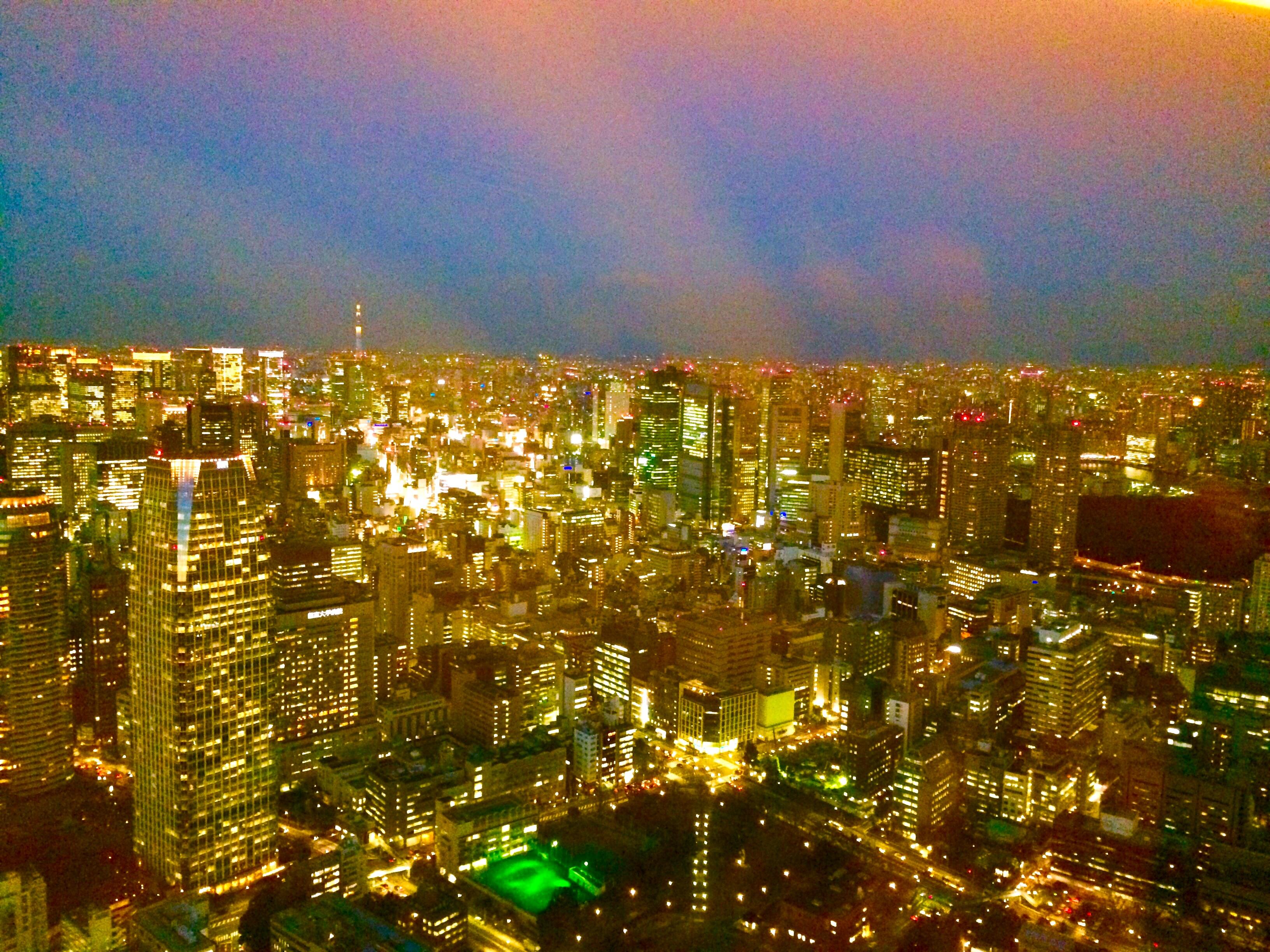 東京の観光-東京タワー-34