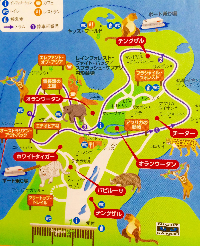 シンガポール動物園-MAP