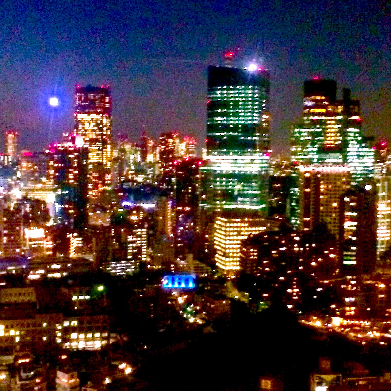 東京の観光-東京タワー-夜景12