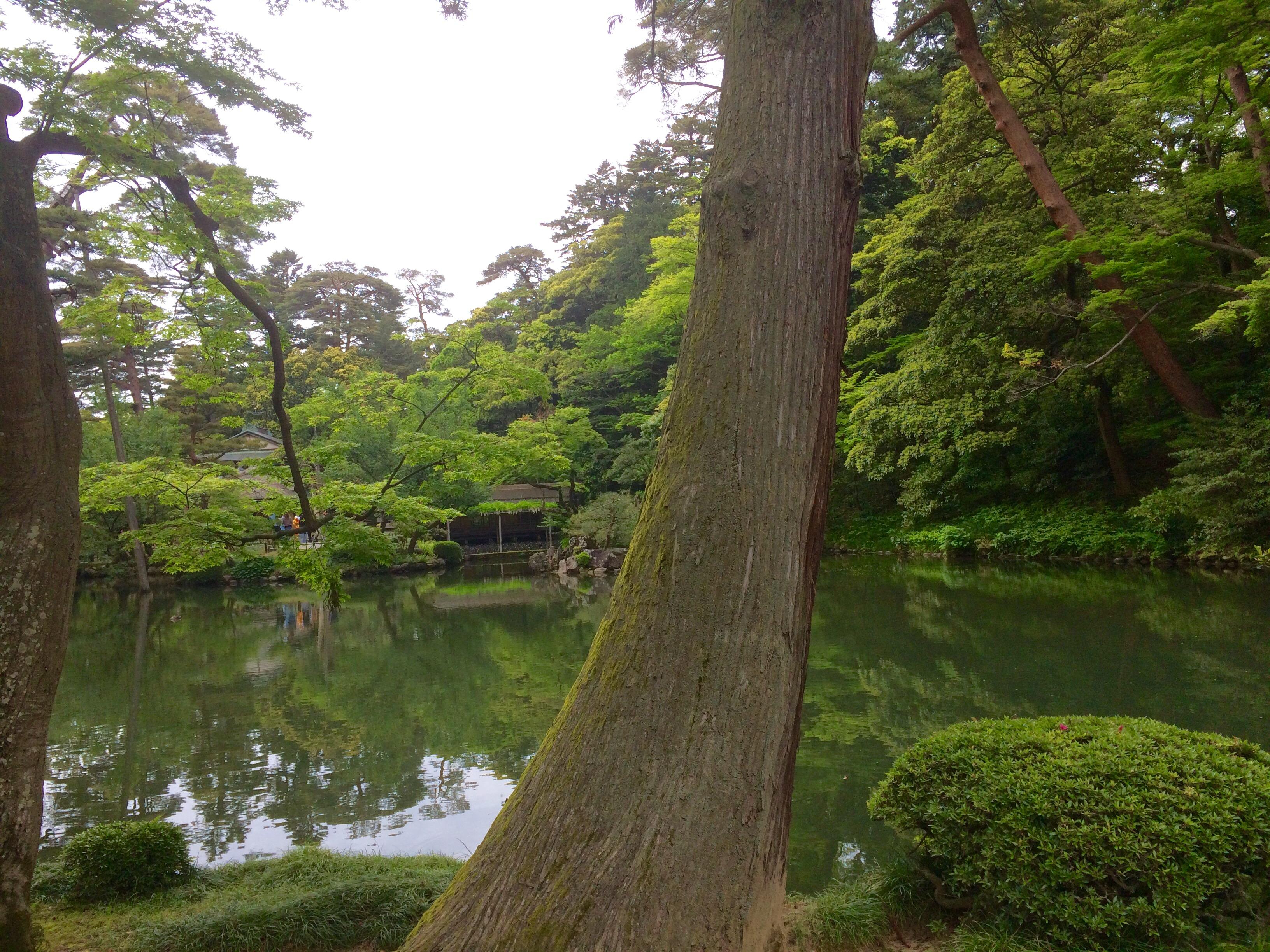 金沢の観光スポット-兼六園-7
