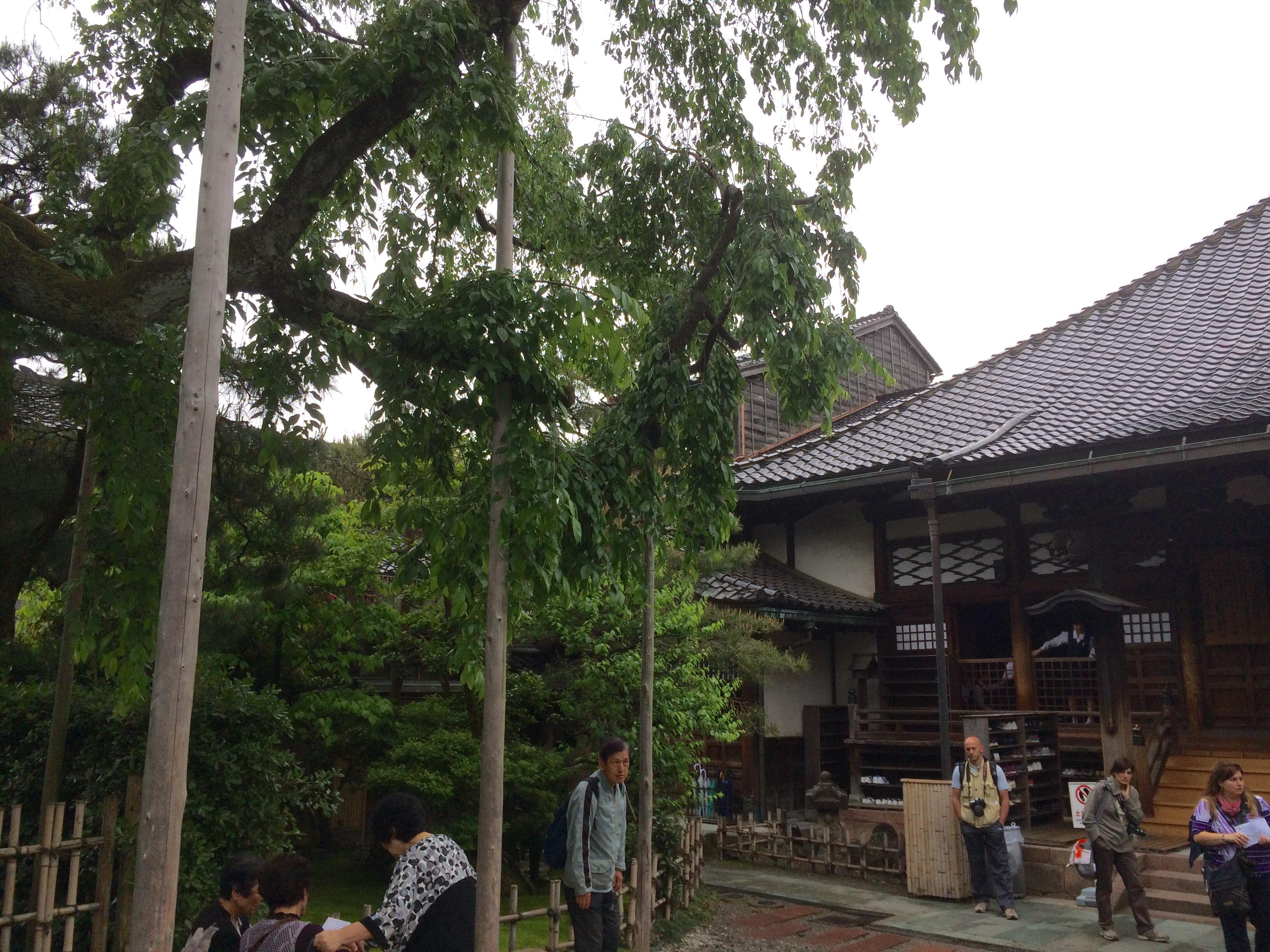 忍者寺-金沢の観光スポット-妙立寺-5