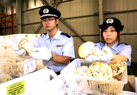 帰国-税関-通関手続き-2