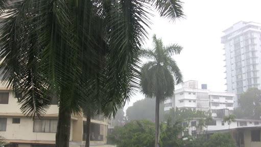シンガポール-気温-季節-気候!旅行-おすすめの時期-10