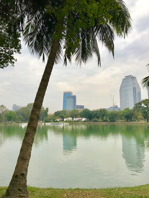 バンコク-おすすめ-観光スポット-ルンピニー公園-9