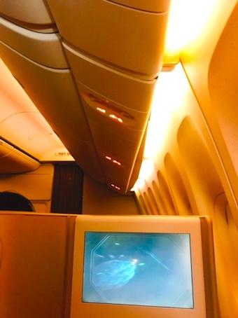 アシアナ航空-ビジネスクラス-評判-パリ-2